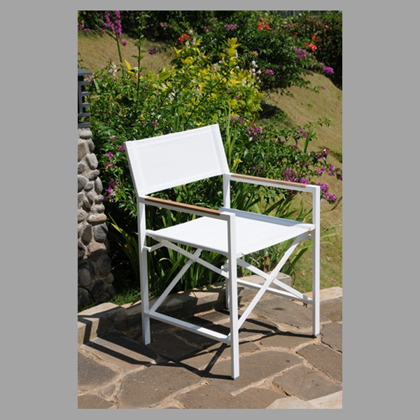 Groovy Sonoma Director Arm Chair With Sling Ss White Casa Java Gamerscity Chair Design For Home Gamerscityorg