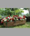Sonoma Planter 1m