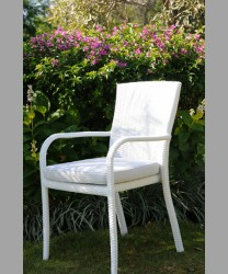 Tuscany Dining Arm Chair 2015